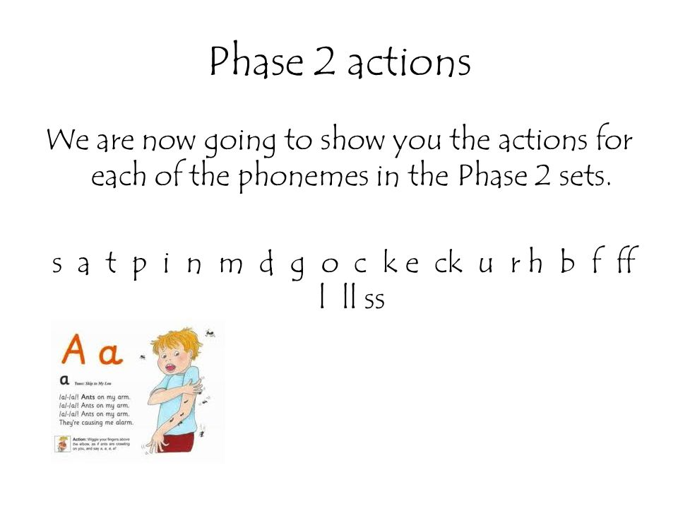 Phase 2 actions