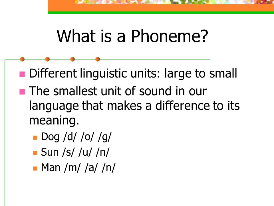 What is a Phoneme Different linguistic units: large to small
