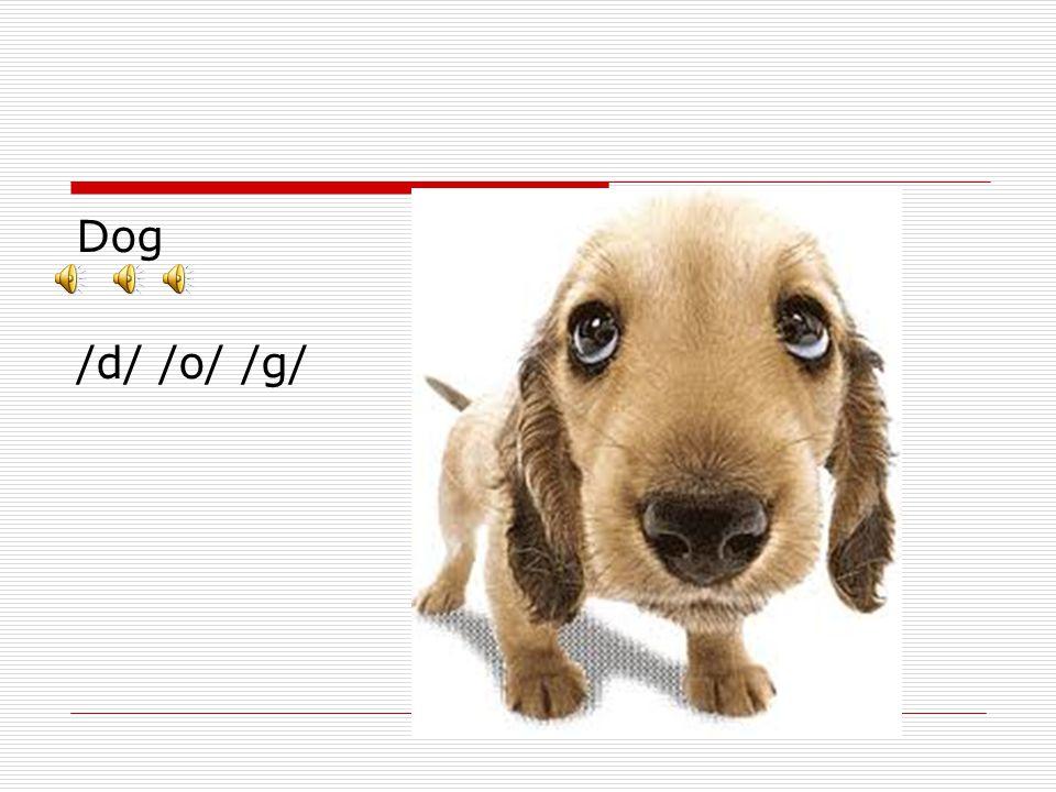 Dog /d/ /o/ /g/
