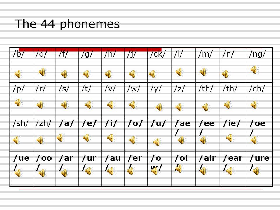 The 44 phonemes /b/ /d/ /f/ /g/ /h/ /j/ /ck/ /l/ /m/ /n/ /ng/ /p/ /r/