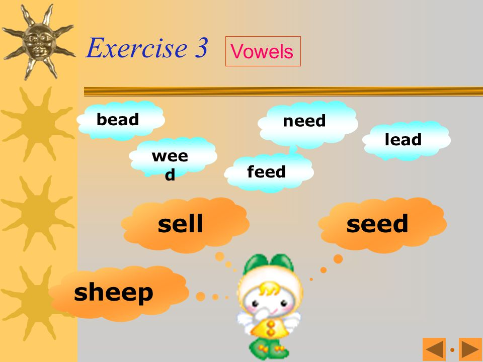 Exercise 3 Vowels bead need lead weed feed sell seed sheep
