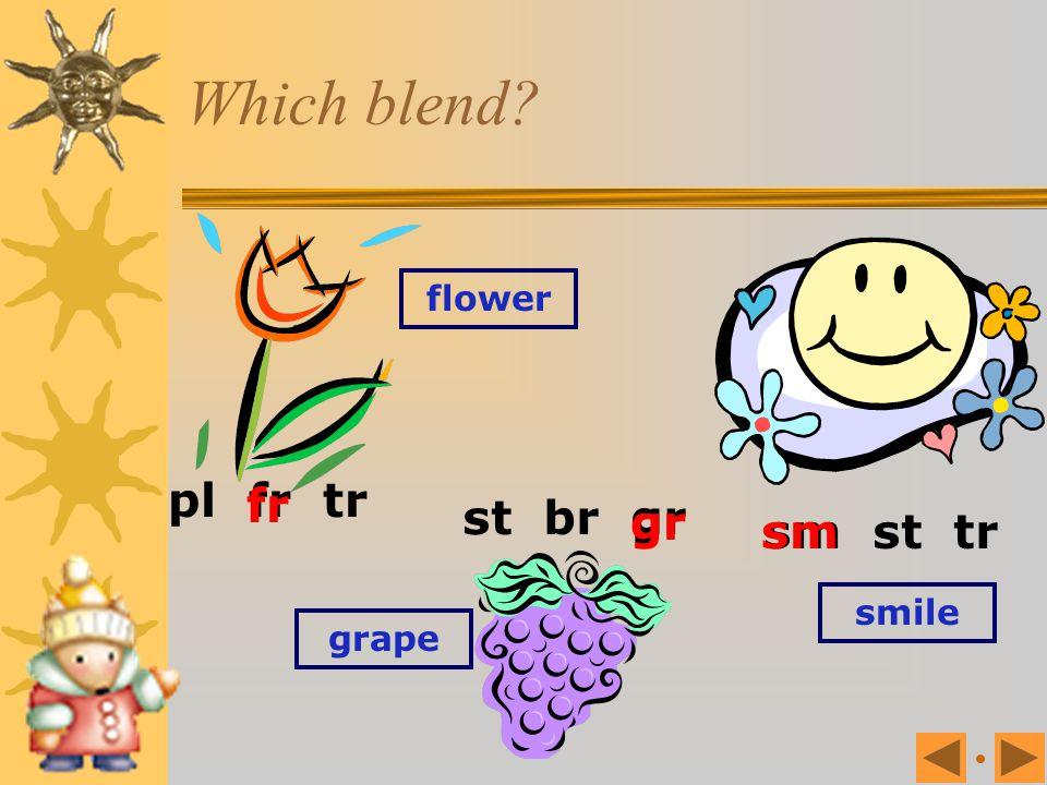 Which blend pl fr tr sm st tr flower fr st br gr gr sm smile grape
