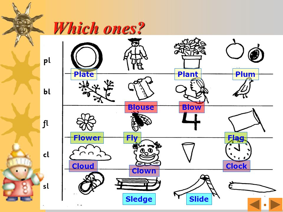 Which ones Plate Plant Plum Blouse Blow Flower Fly Flag Cloud Clown