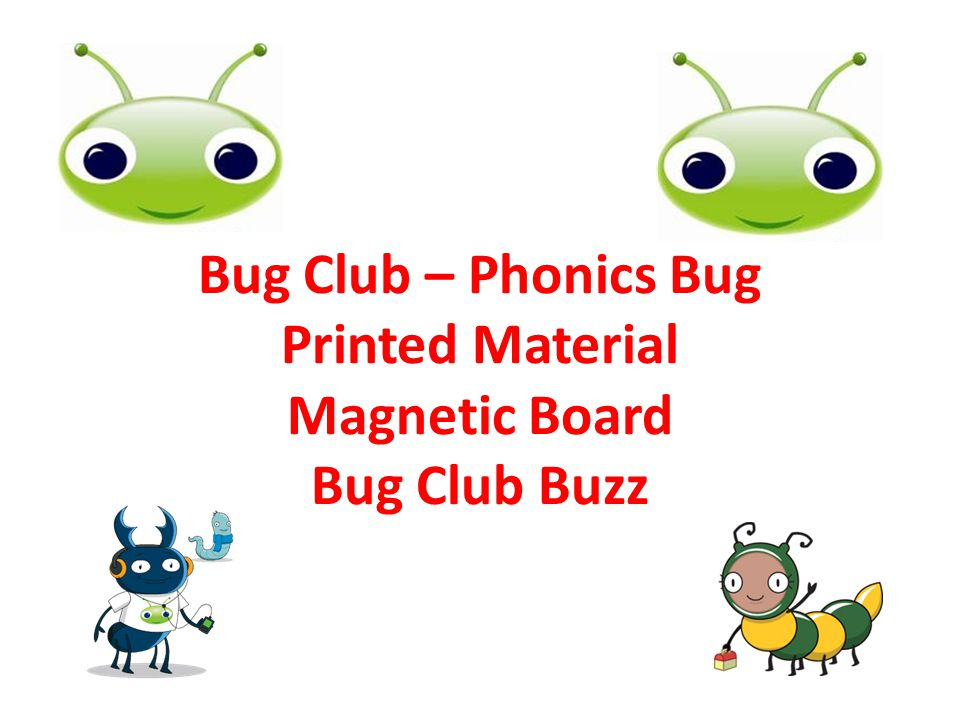 Bug Club – Phonics Bug Printed Material Magnetic Board Bug Club Buzz