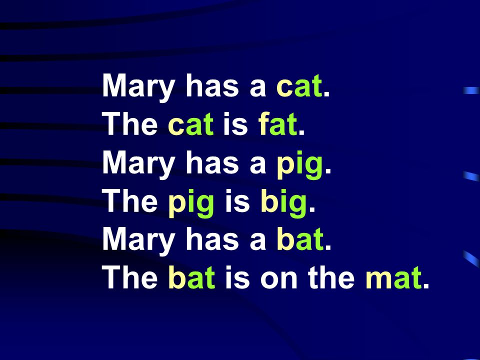 Mary has a cat. The cat is fat. Mary has a pig.