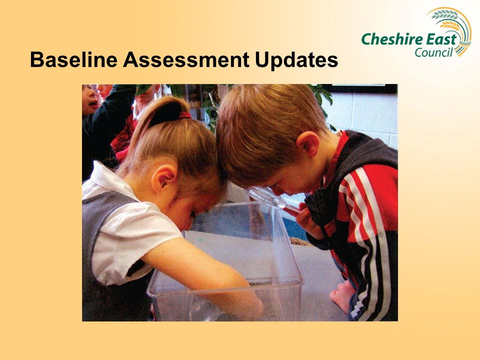 Baseline Assessment Updates