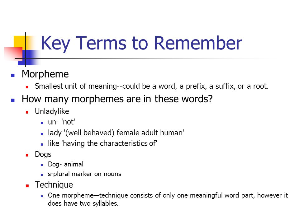 Key Terms to Remember Morpheme How many morphemes are in these words
