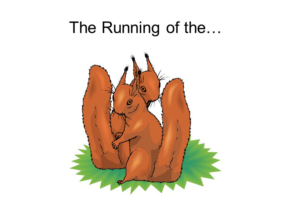 The Running of the…