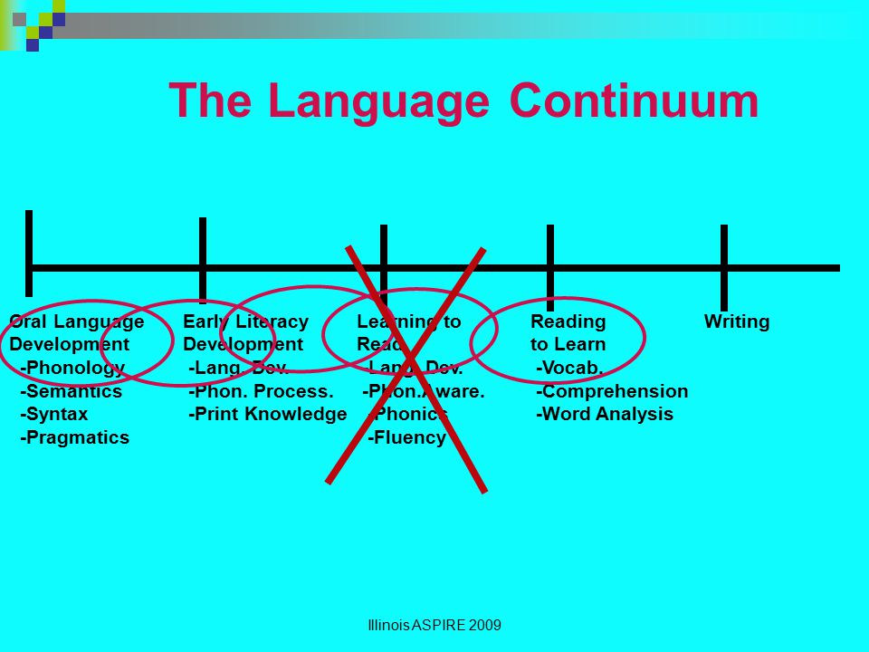 The Language Continuum