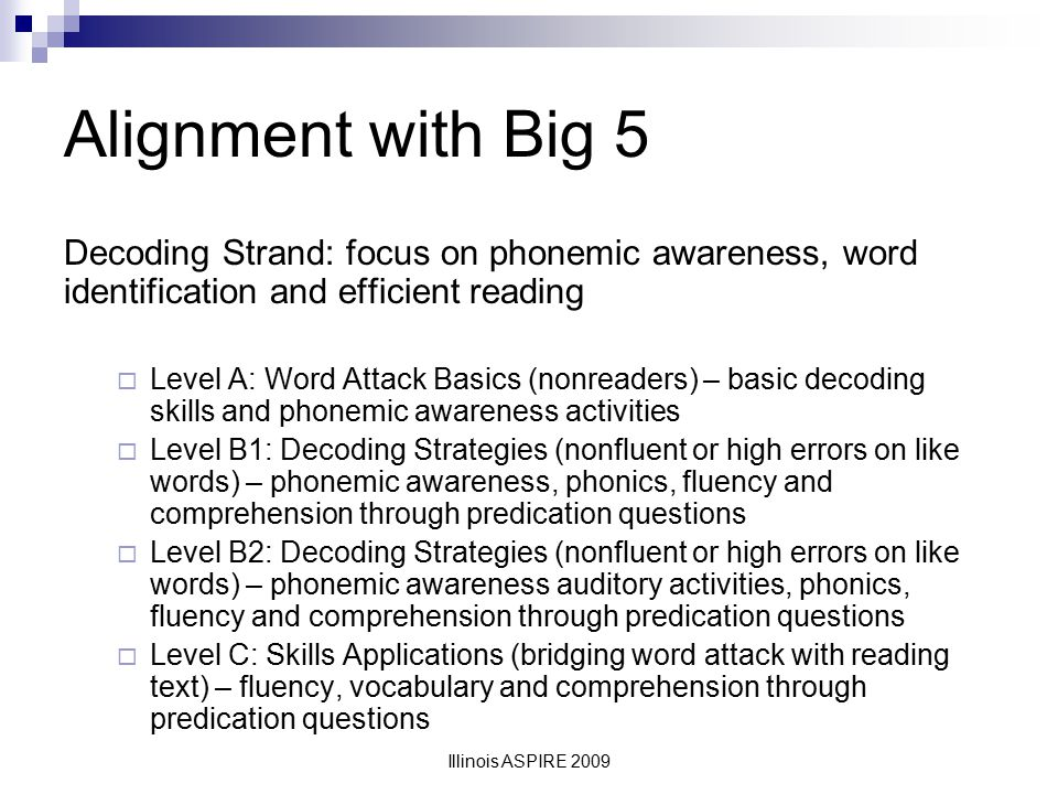 Alignment with Big 5 Decoding Strand: focus on phonemic awareness, word identification and efficient reading.