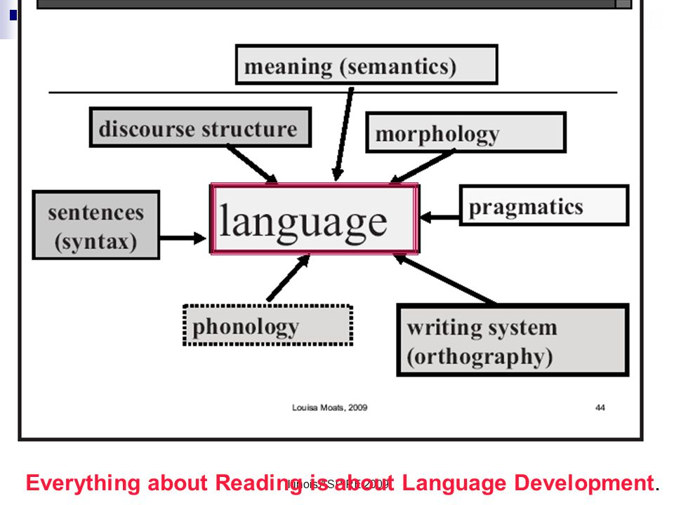 Everything about Reading is about Language Development.