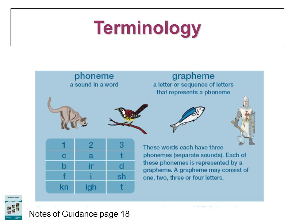Terminology Notes of Guidance page 18