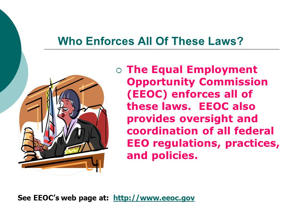 Who Enforces All Of These Laws
