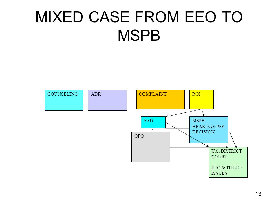 MIXED CASE FROM EEO TO MSPB