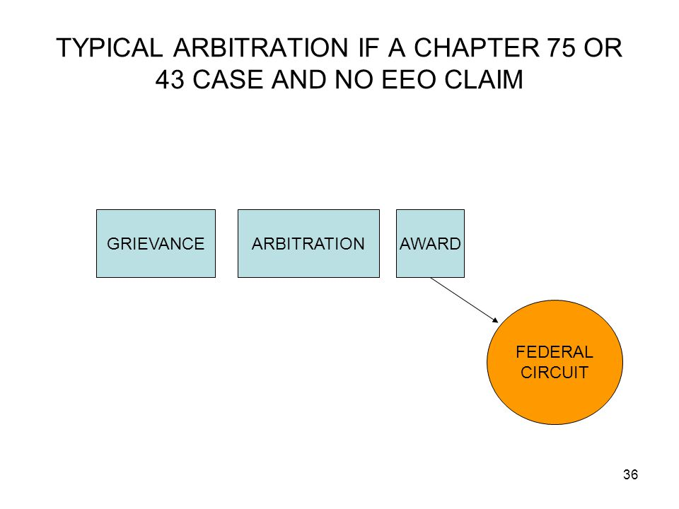 TYPICAL ARBITRATION IF A CHAPTER 75 OR 43 CASE AND NO EEO CLAIM