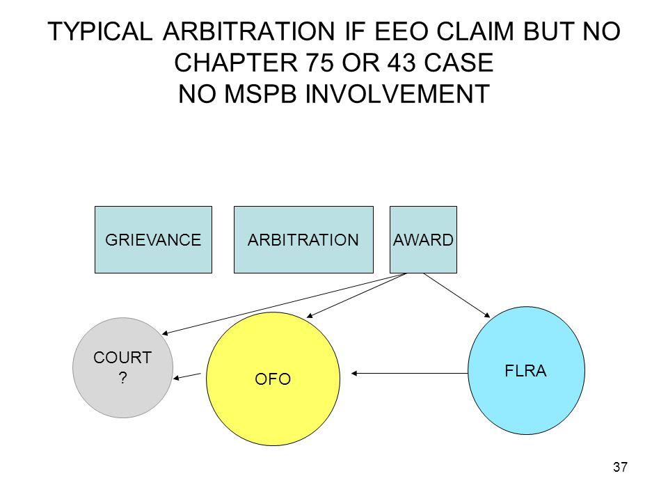 TYPICAL ARBITRATION IF EEO CLAIM BUT NO CHAPTER 75 OR 43 CASE NO MSPB INVOLVEMENT