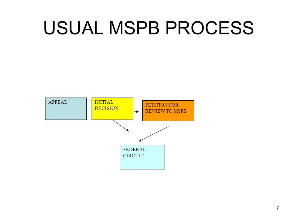 USUAL MSPB PROCESS APPEAL INITIAL DECISION PETITION FOR REVIEW TO MSPB