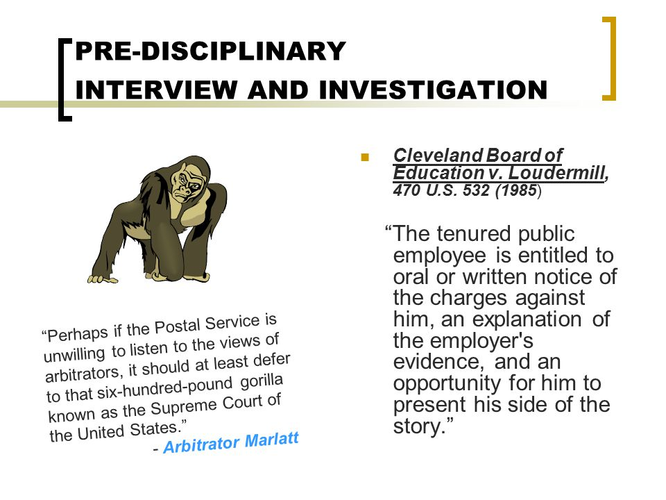 PRE-DISCIPLINARY INTERVIEW AND INVESTIGATION