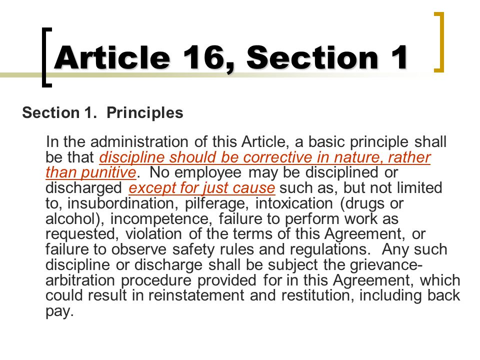 Article 16, Section 1 Section 1. Principles