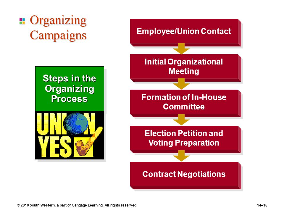 Organizing Campaigns Steps in the Organizing Process