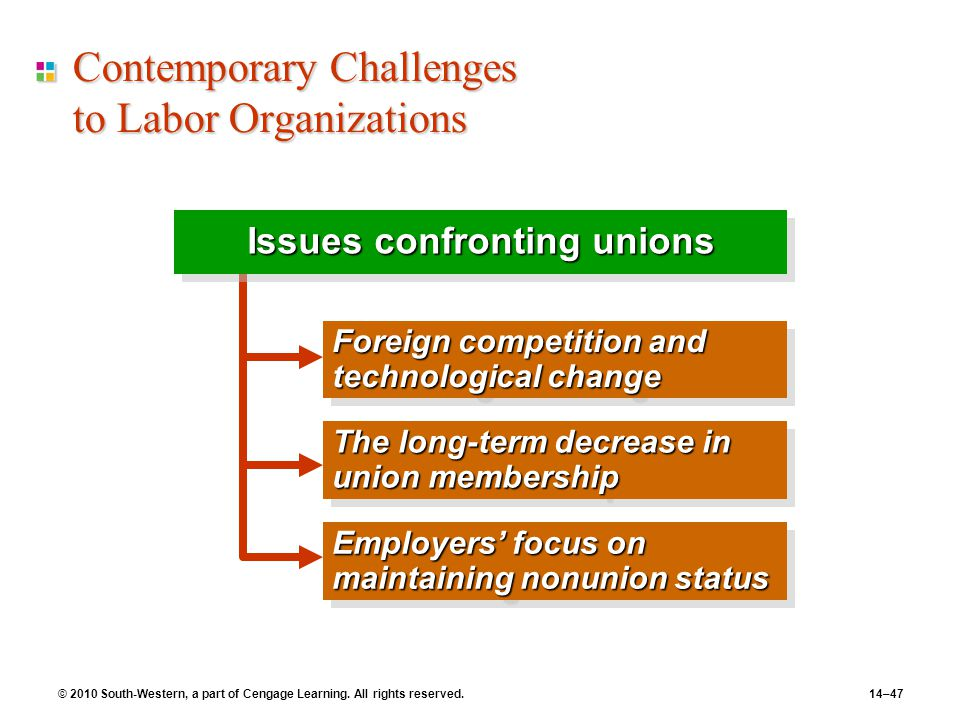 Contemporary Challenges to Labor Organizations