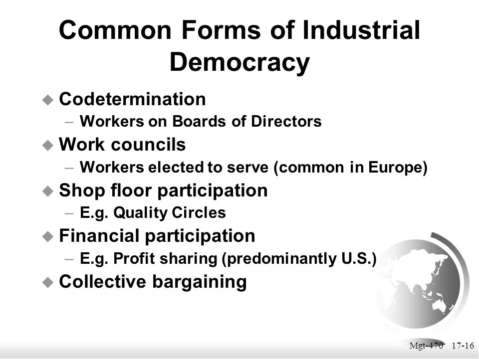 Common Forms of Industrial Democracy