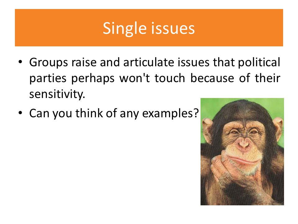 Single issues Groups raise and articulate issues that political parties perhaps won t touch because of their sensitivity.