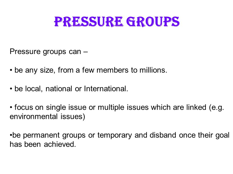 PRESSURE GROUPS Pressure groups can –