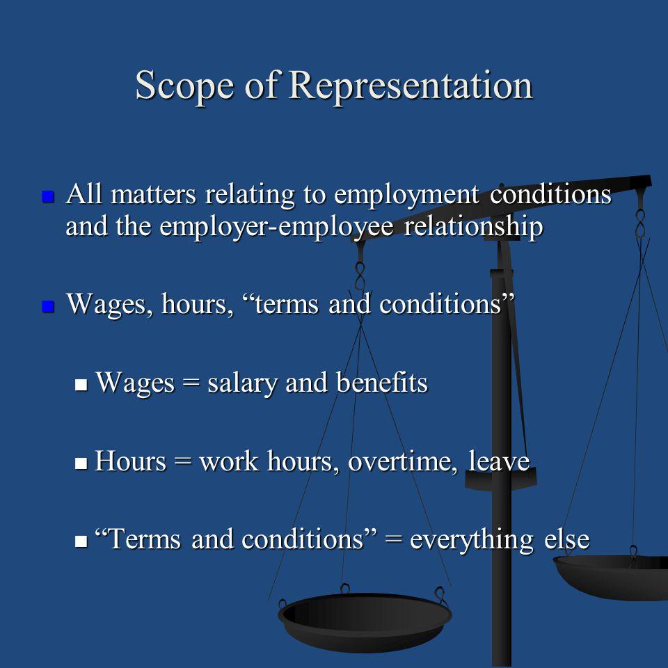 Scope of Representation