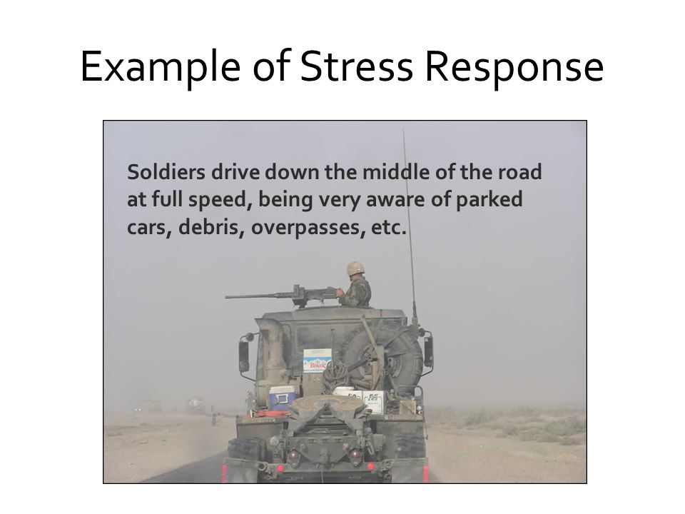 Example of Stress Response