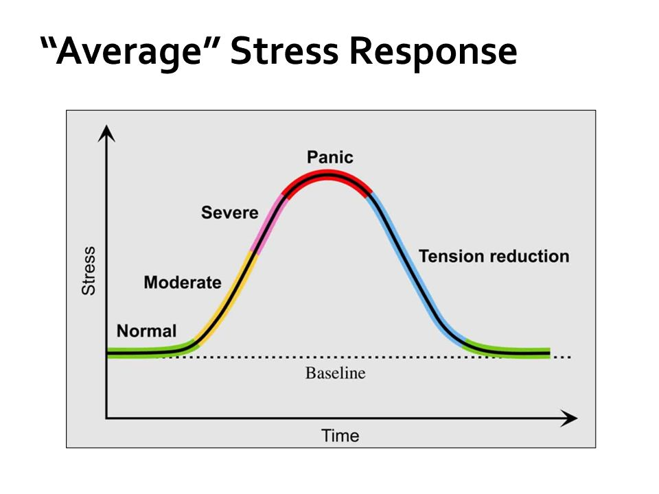 Average Stress Response