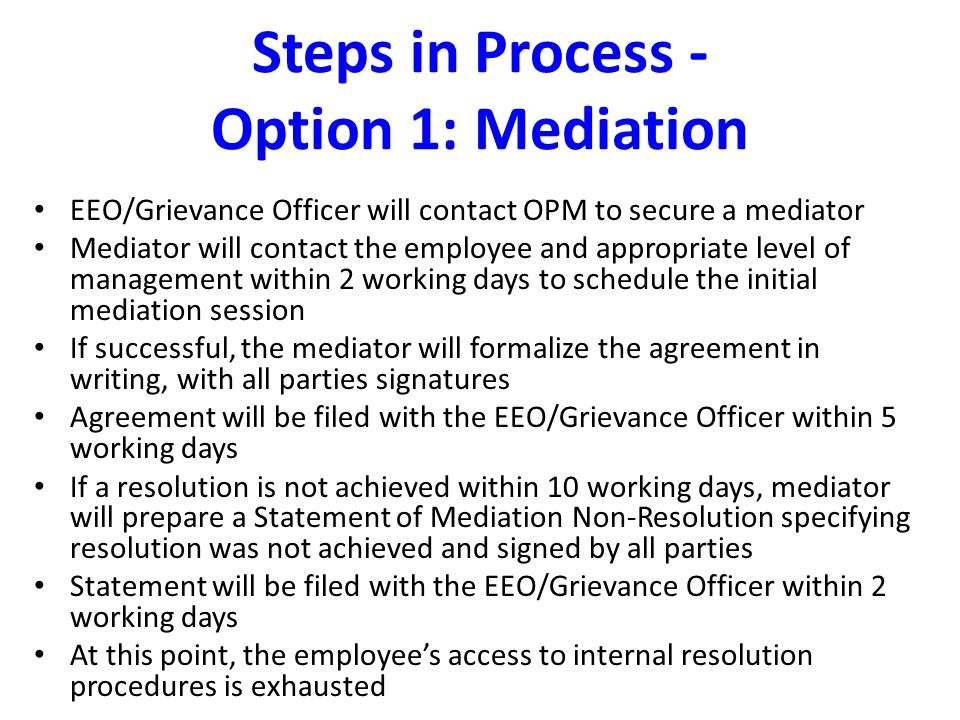 Steps in Process - Option 1: Mediation