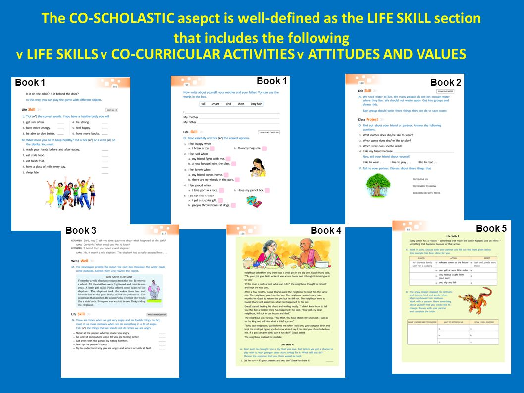 The CO-SCHOLASTIC asepct is well-defined as the LIFE SKILL section that includes the following
