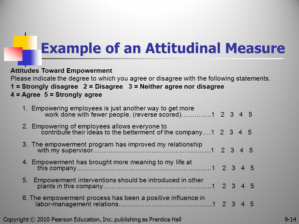 Example of an Attitudinal Measure