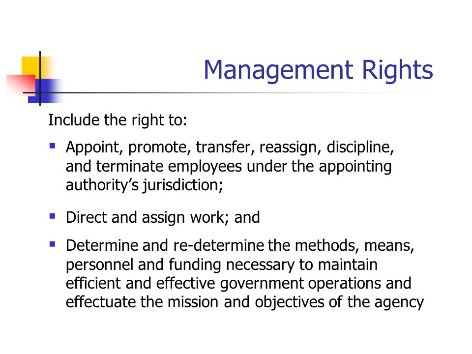 Management Rights Include the right to: