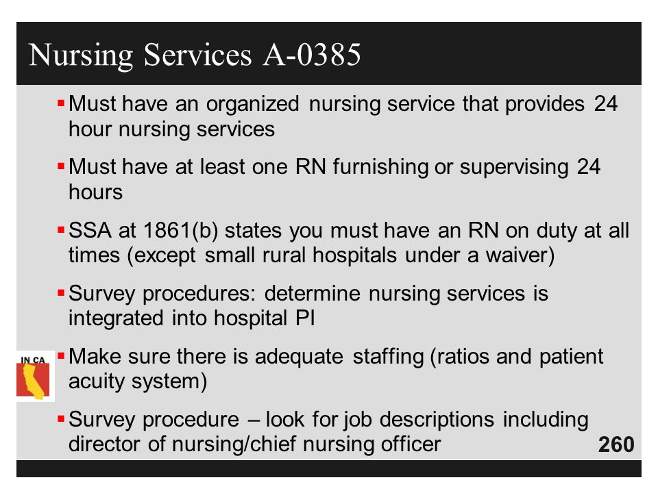 Nursing Services A-0385 Must have an organized nursing service that provides 24 hour nursing services.