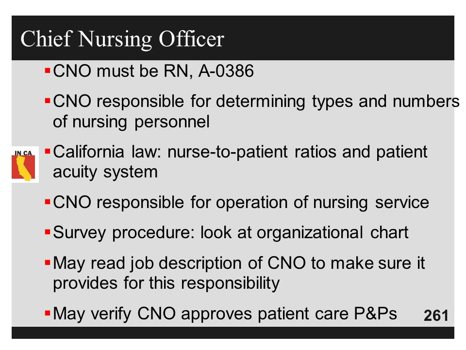 Chief Nursing Officer CNO must be RN, A-0386