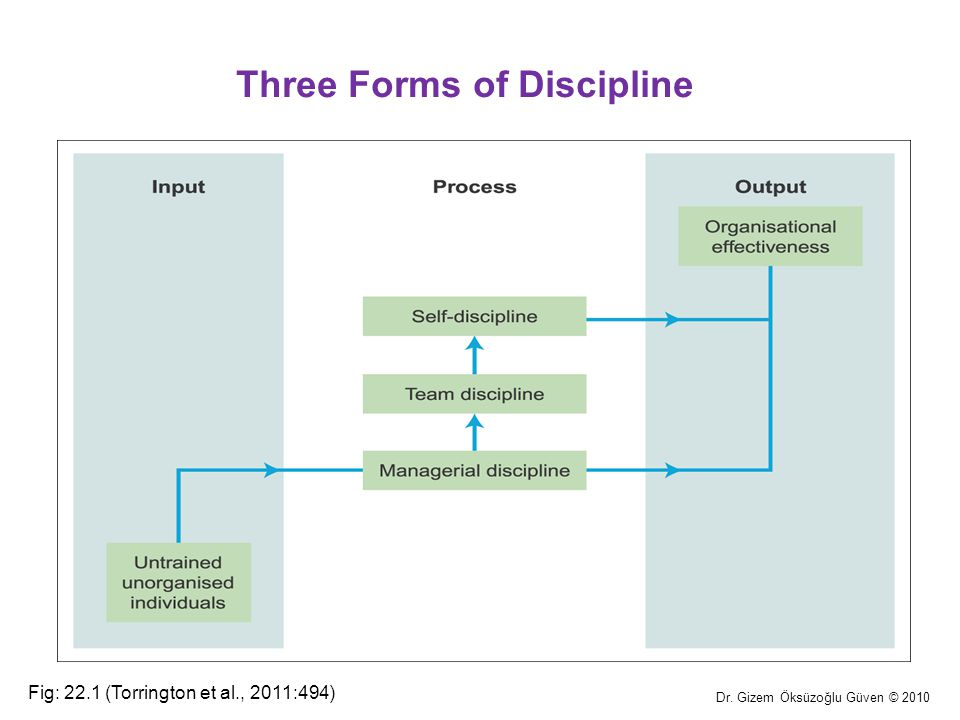 Three Forms of Discipline