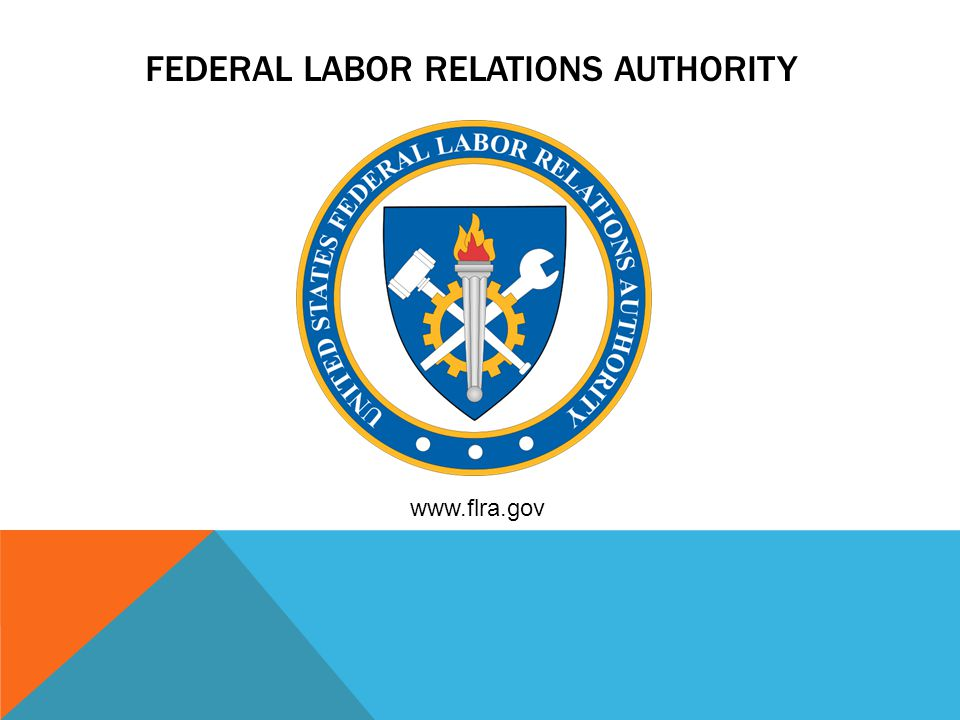 FEDERAL LABOR RELATIONS AUTHORITY