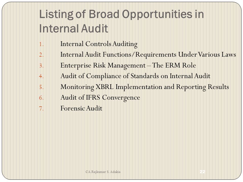 Listing of Broad Opportunities in Internal Audit