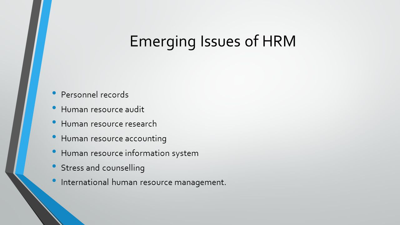 Emerging Issues of HRM Personnel records Human resource audit