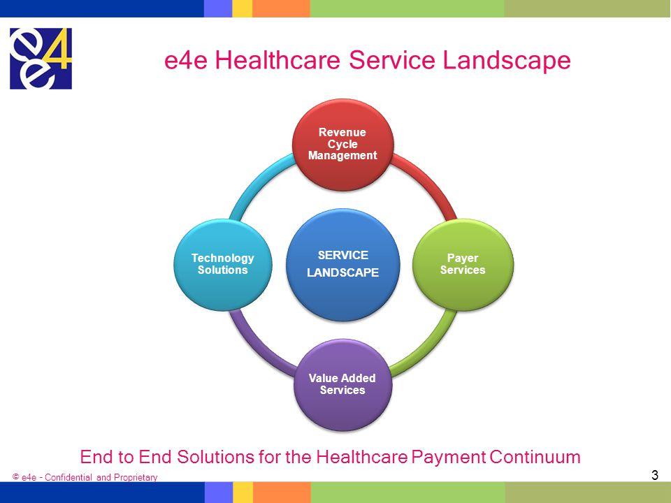 e4e Healthcare Service Landscape