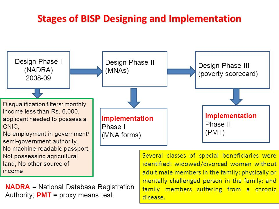 Stages of BISP Designing and Implementation