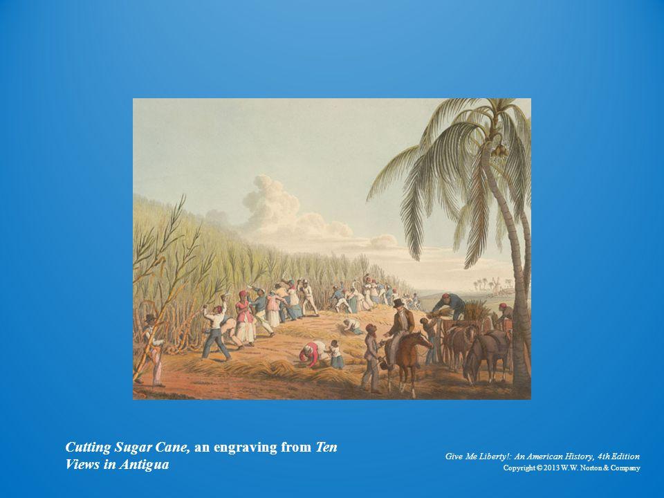 Cutting Sugar Cane Cutting Sugar Cane, an engraving from Ten