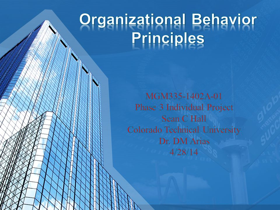 Organizational Behavior Principles