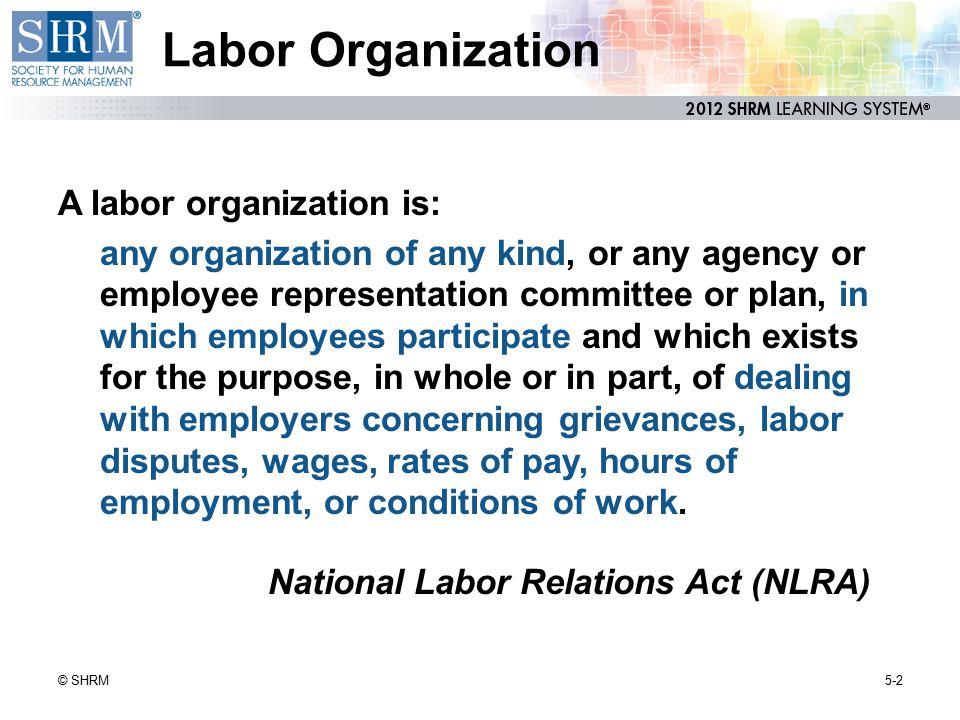 Labor Organization A labor organization is: