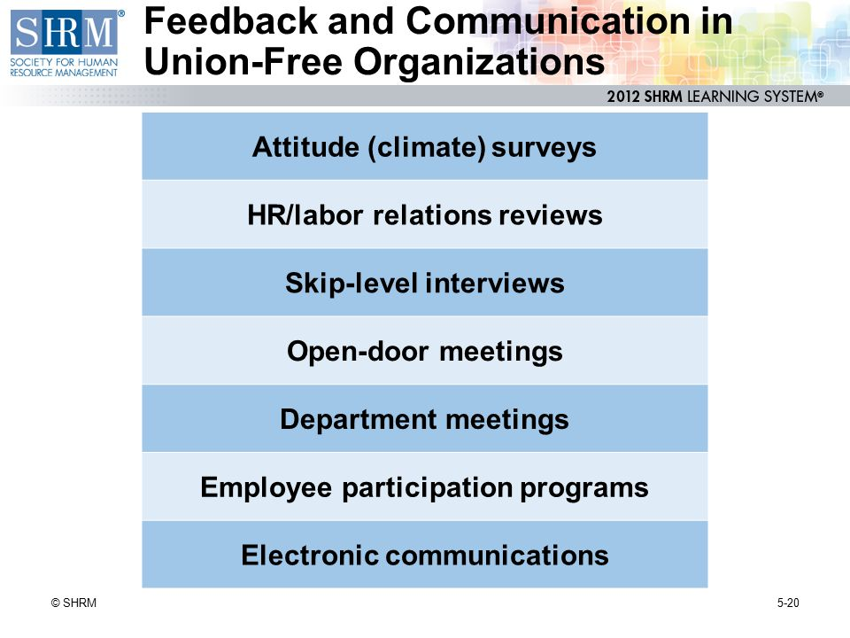 Feedback and Communication in Union-Free Organizations