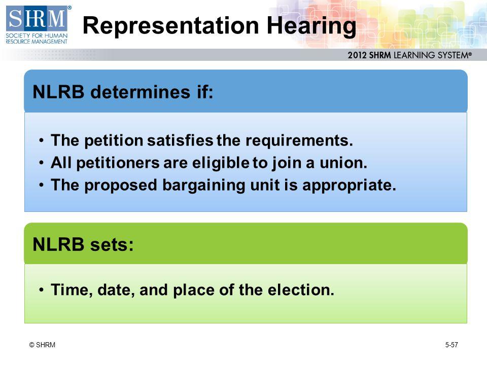 Representation Hearing