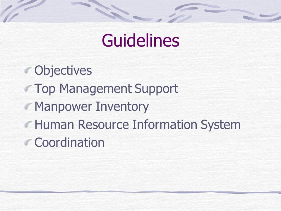Guidelines Objectives Top Management Support Manpower Inventory