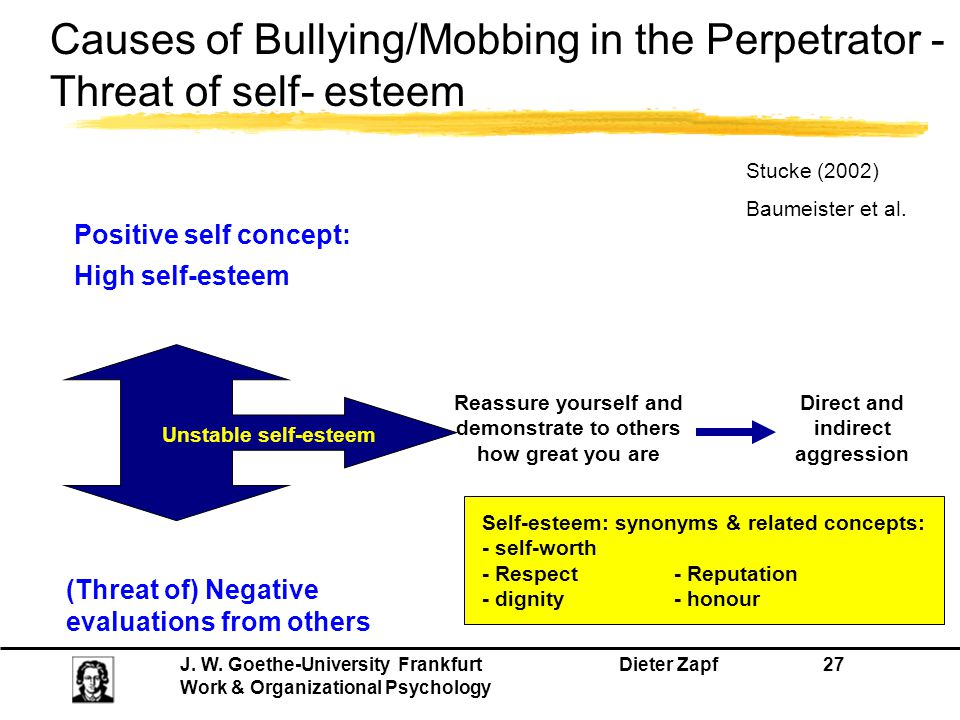 Causes of Bullying/Mobbing in the Perpetrator - Threat of self- esteem